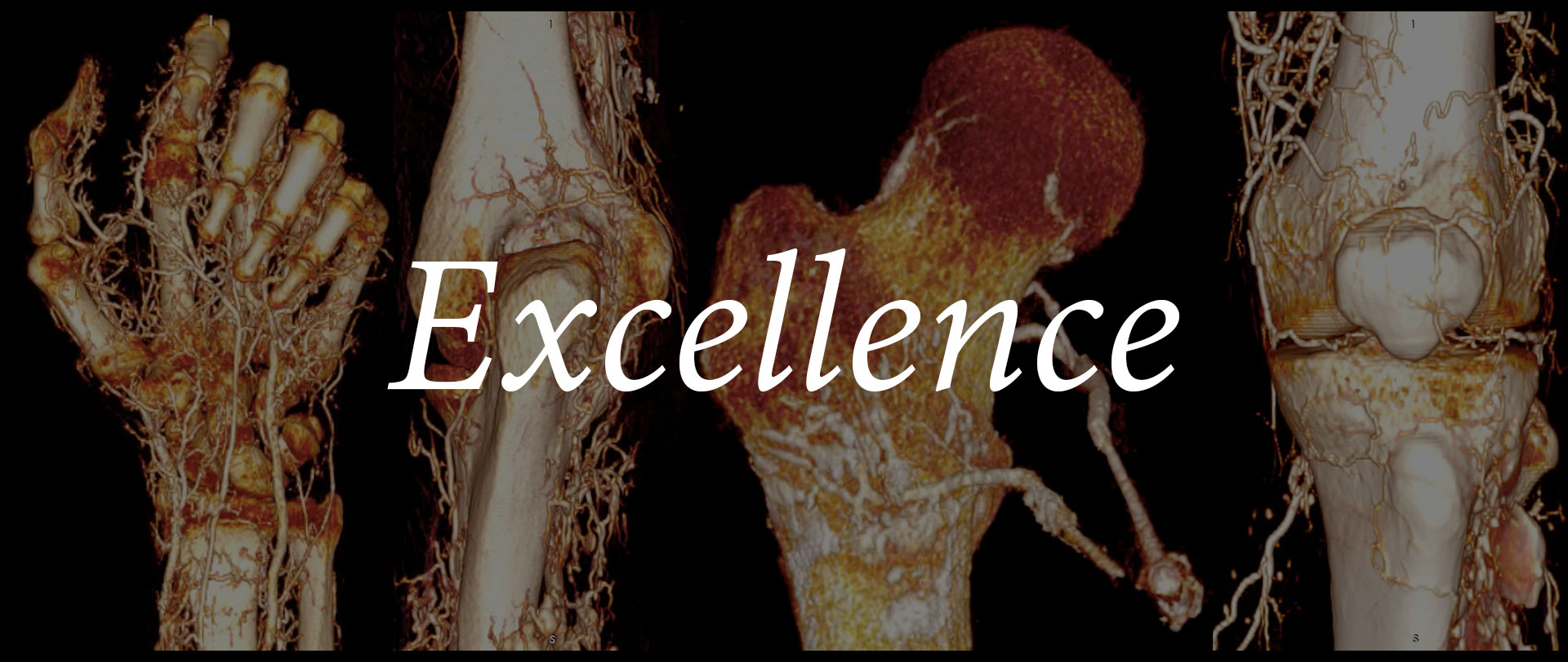 Excellence in patient care and research